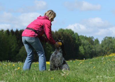 Dog Coaching Susan Weber Hundeschule Lugau